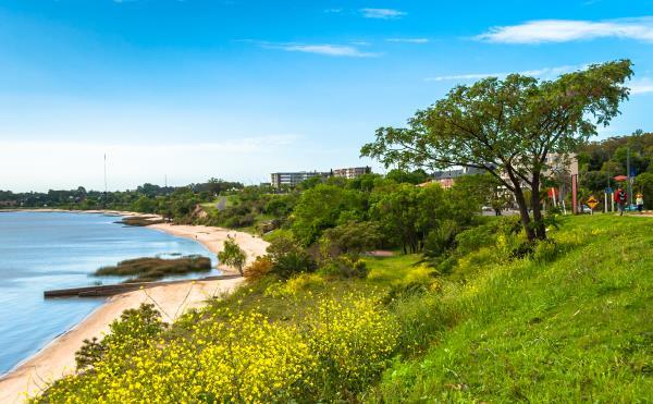 Tour of Uruguay - coast near Colonia