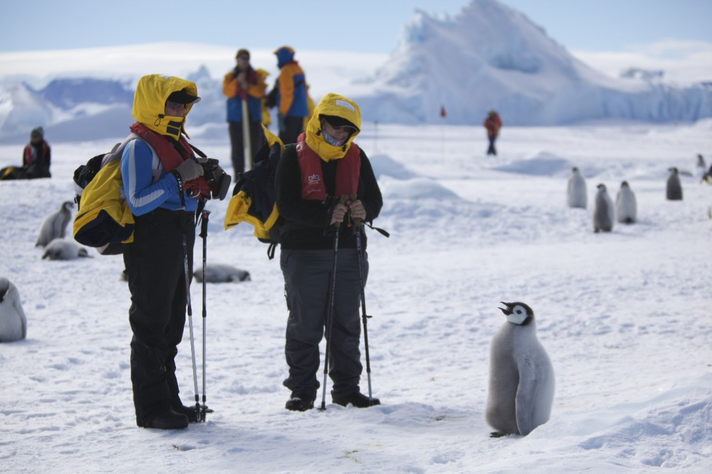 Antarctic, RealWorld, Sights worth getting up for in South America