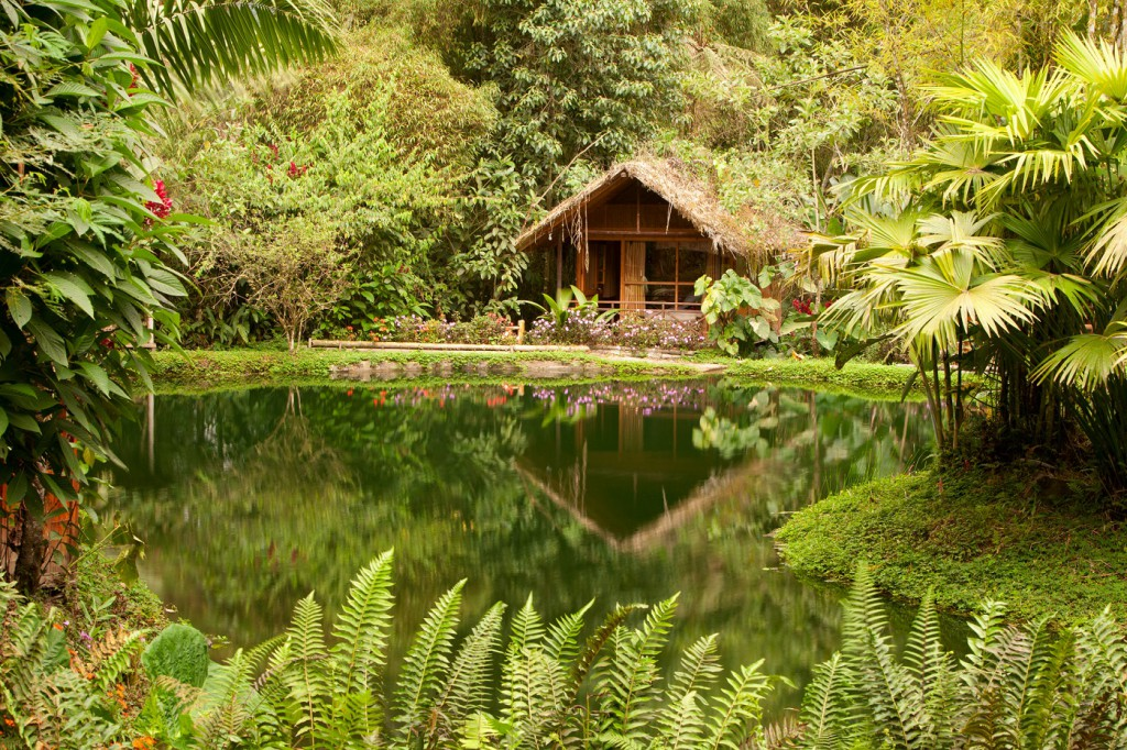 cloud-forest-hut, realworld, best places to propose in south america