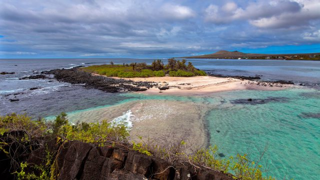 Galapagos Floreana RW