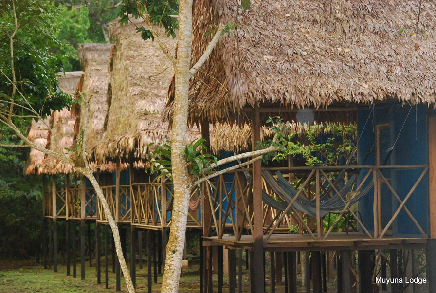 Jungle lodges near Iquitos