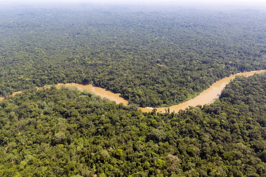 Aerial view of the River Amazon