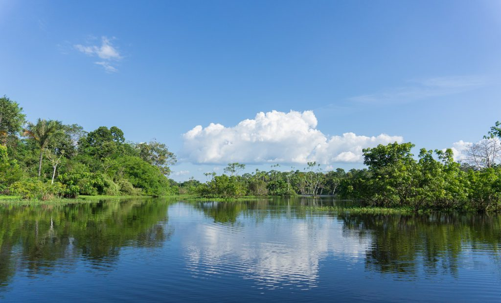 Northern Amazon river