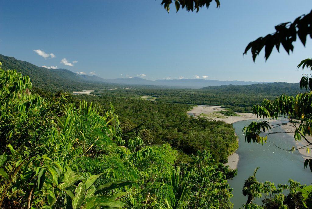 Manu Wildlife Reserve