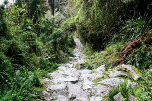 Inca Trail passes released for 2019
