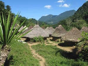 Wiwa village in the Tayrona National Park