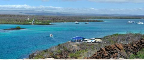 Cruises and Tours to the Galapagos Islands
